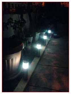 the diy solar garden lights in action